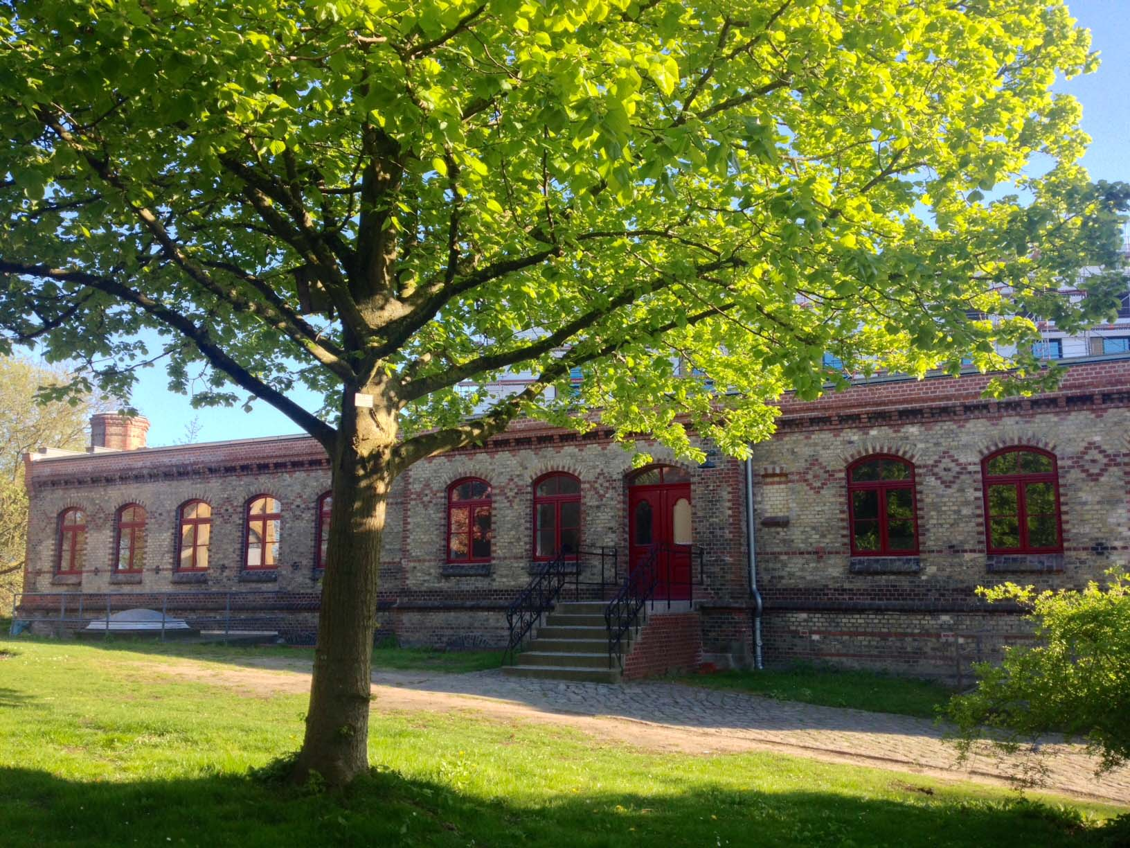 Alter Botanischer Garten Kiel: Alter Botanischer Garten Kiel Aktuelles